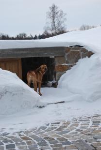 Usedlost v Orlově u Příbrami - Dům pro psa - foto: archiv autora