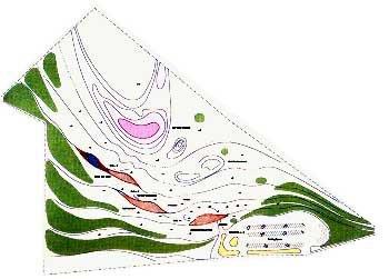 Pavilon v rekreačním parku Torrevieja - Situace - foto: Toyo Ito and Associates, Architects