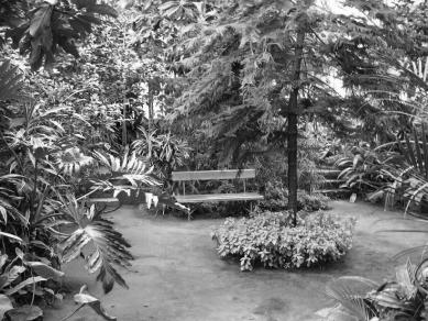 Dům - zahrada vDolních Chabrech - Inspirace - foto: Šépka architekti