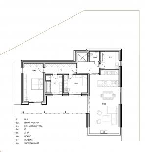 Rodinný dům ve svahu - 1NP