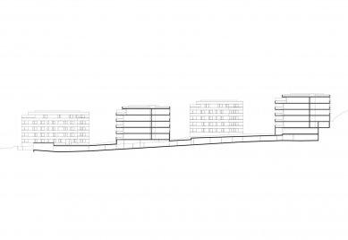 Obytný soubor Neue Seeschanze - Podélný řez - foto: Baumschlager Eberle Architekten