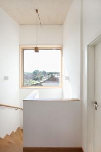 Domesi Concept House 2