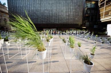 Victoria Pragensis - botanický labyrint - foto: Jakub Nedbal