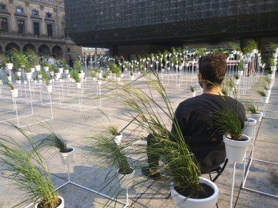 Victoria Pragensis - botanický labyrint