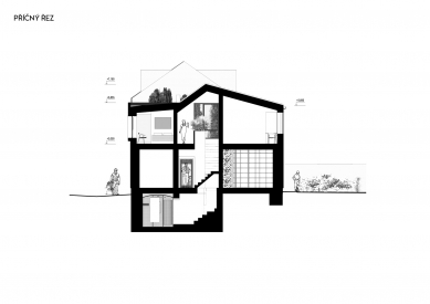 Rekonstrukce rodinného domu v Bohnicích - Příčný řez - foto: Archport