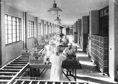 Tabáková továrna v Linci
