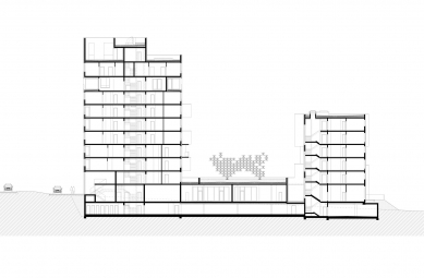 Bytový projekt Čerešne - Řez - foto: Šebo Lichý architekti