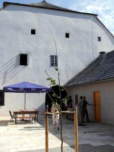Rekonstrukce radnice města Brtnice - foto: Jakub Potůček