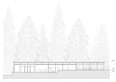 Projekt lesního koupaliště v Liberci - Podélný řez - foto: mjölk architekti