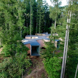 House in the Forest - foto: Florian Busch Architects