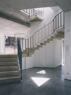 Jetelový dům