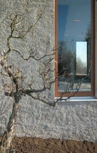 Rodinný dům v Jinonicích - Průhled OP a jídelnou ze západu na východ. Zachované ovocné stromy z původního sadu - foto: Miroslav Cikán