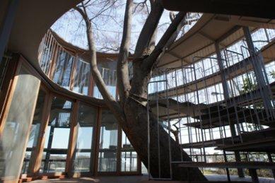 Mateřská škola v Tokiu od Tezuka Architects - foto: Tezuka Architects