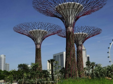 V Singapuru zahájil provoz pro veřejnost park s umělými stromy - foto: Choo Yut Shing