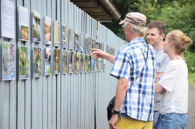 Letní dílna a workcamp na Městské plovárně vPlzni  - Výstava historických fotografií plovárny - foto: Sergey Lelyukh