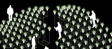 Na Piazzettě Národního divadla vyroste botanický labyrint