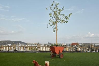Střecha Paláce Lucerna se na 15 dnů promění vzelenou louku - foto: © BoysPlayNice Photography