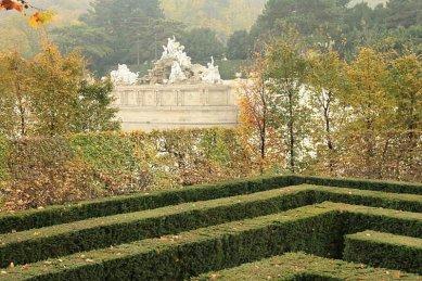 Bloudění zelení - Schönbrunn - foto: gardenpanorama.cz